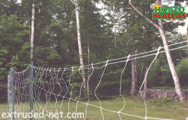 Instaled Extruded net for the plants.