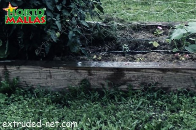 Extruded net for the protection of the plants against pest